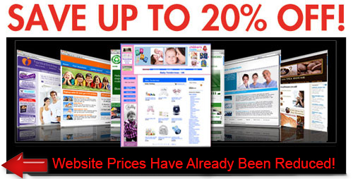 turnkey affiliate website businesses for sale here
